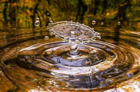 """""""Moja woda"""" ruszyły wnioski"""